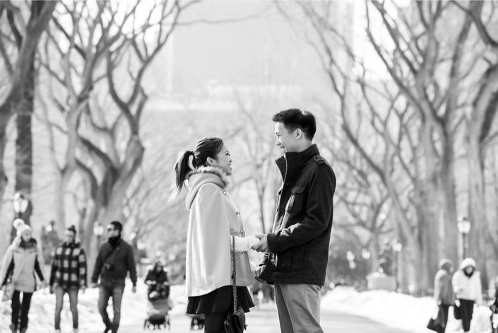 Image 2 of Central Park Winter Proposal