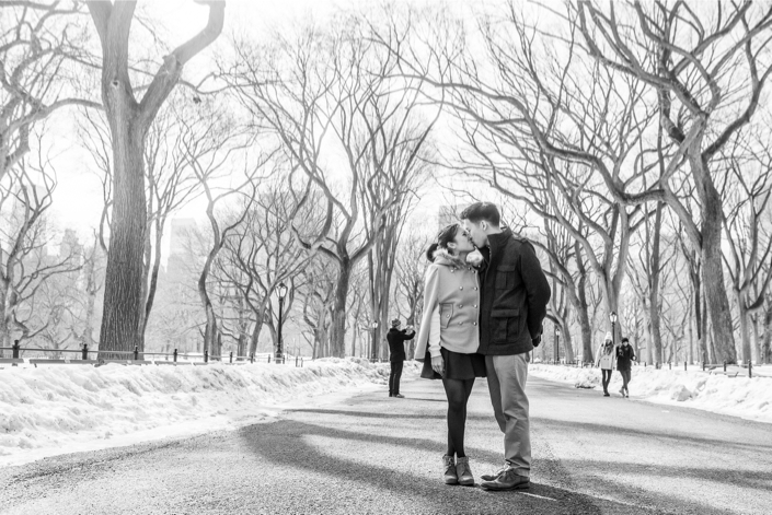 Image 1 of Central Park Winter Proposal