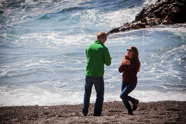 Image 9 of Emily and Jim | Point Lobos Proposal