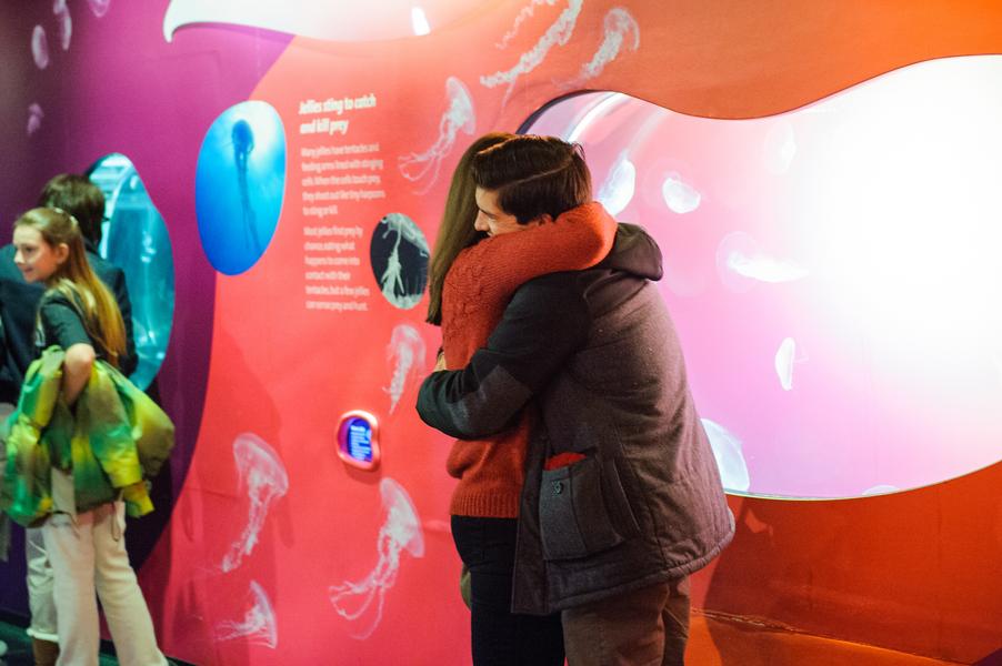 aquarium marriage proposal_10_low