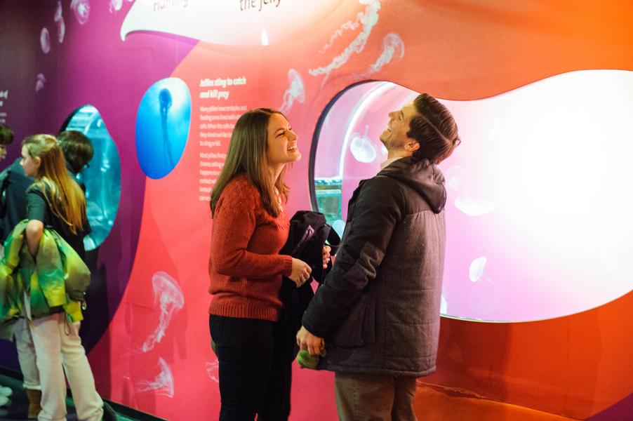 aquarium marriage proposal_11_low