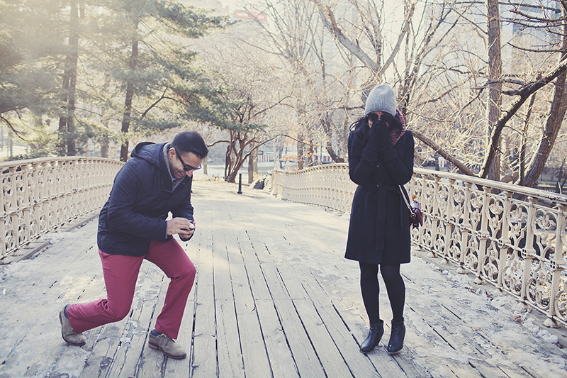 Image 4 of Pooja and Aanand | A Central Park Proposal Story