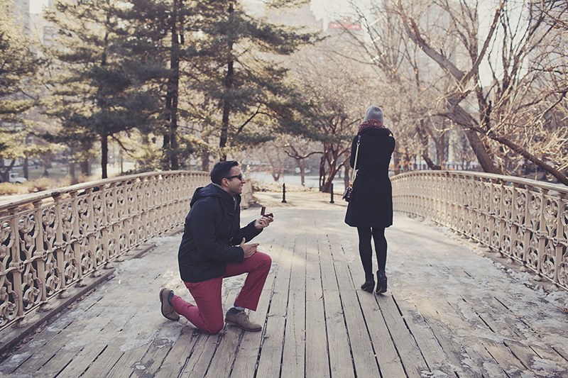 cute marriage proposal photos in central park new york city proposal_007