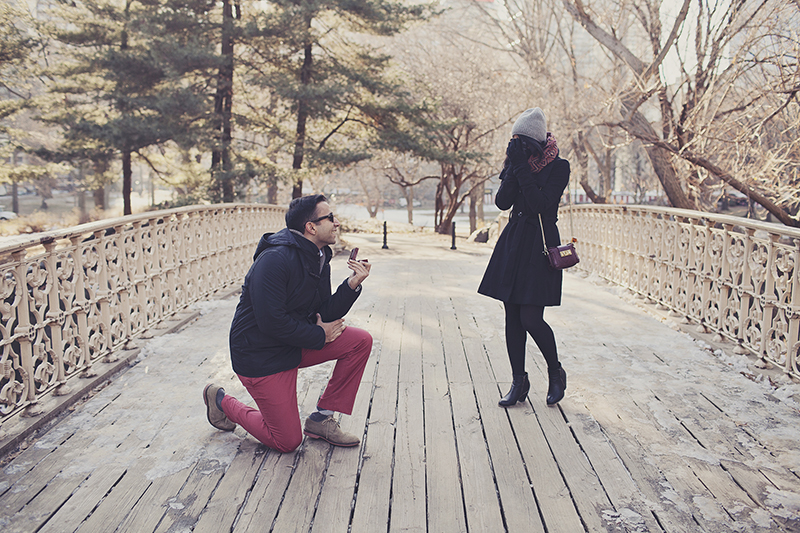 cute marriage proposal photos in central park new york city proposal_009