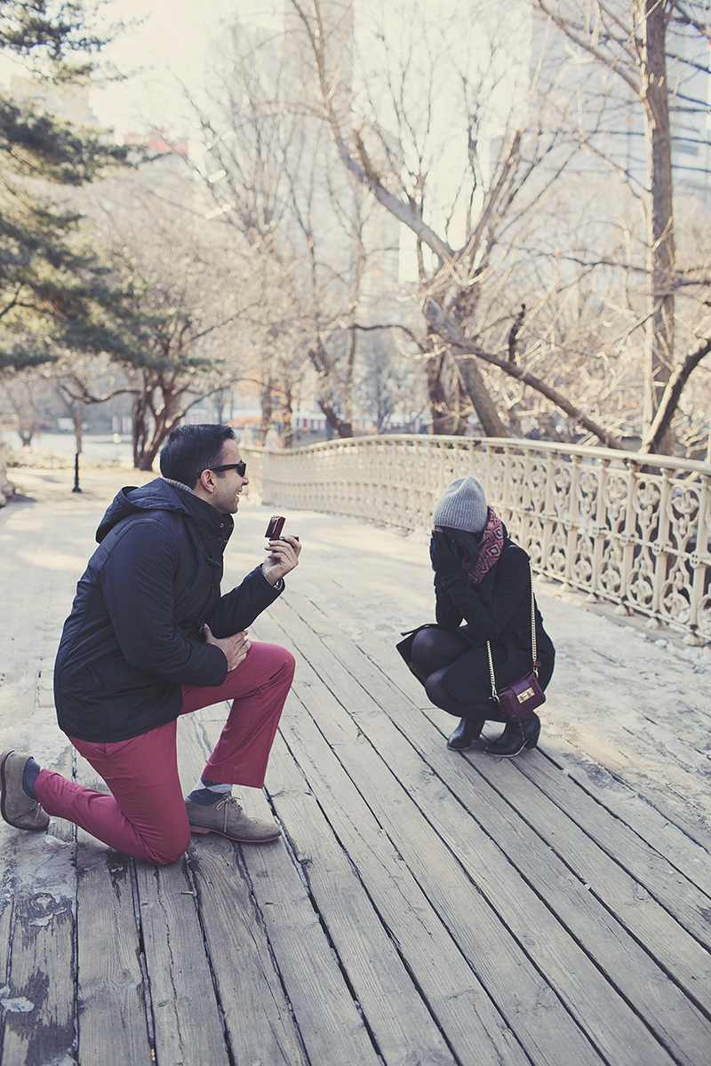Image 7 of Pooja and Aanand | A Central Park Proposal Story