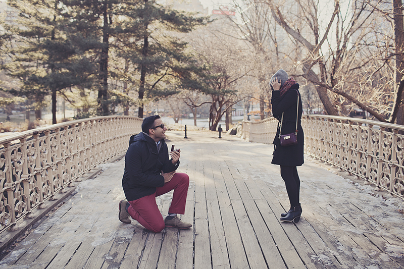 cute marriage proposal photos in central park new york city proposal_012