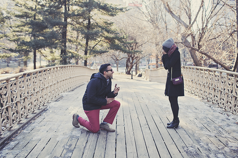 Image 1 of Pooja and Aanand | A Central Park Proposal Story