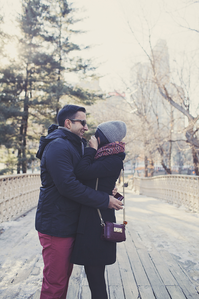 Image 10 of Pooja and Aanand | A Central Park Proposal Story