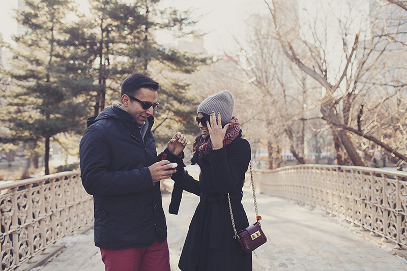 Image 13 of Pooja and Aanand | A Central Park Proposal Story