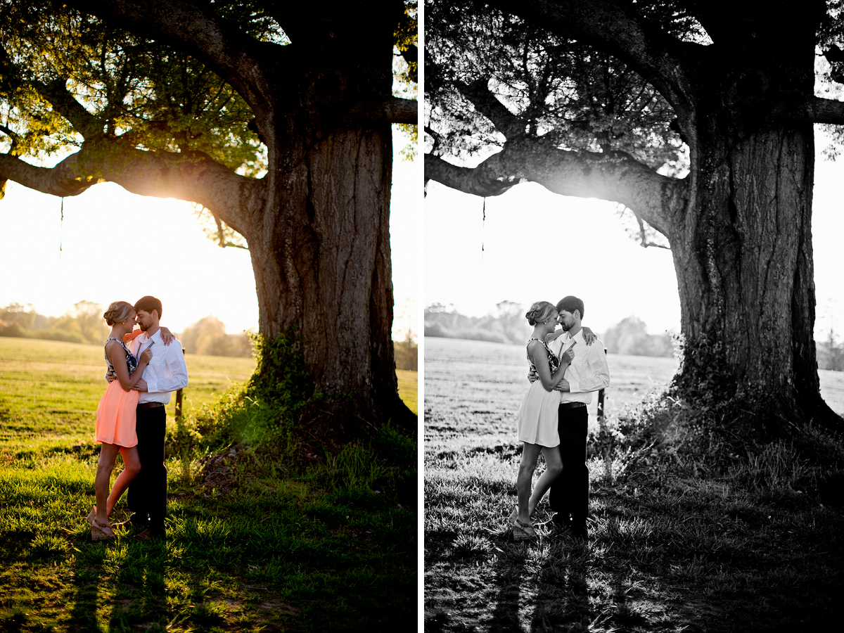 engagement-photo-under-a-tree