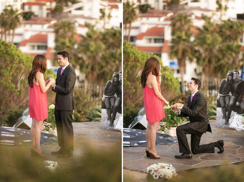 proposal ideas in california