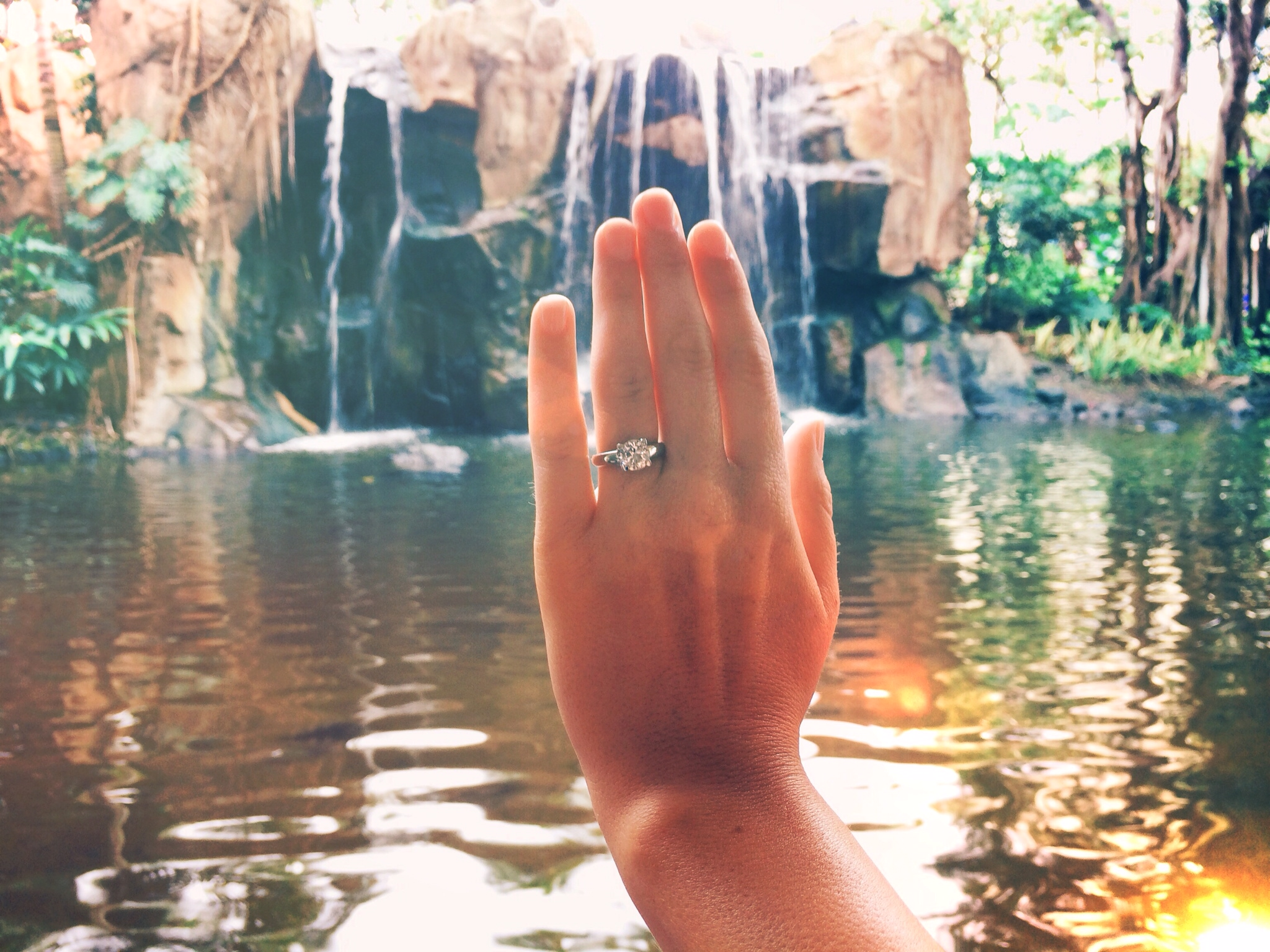 Image 4 of Gorgeous Surprise Proposal in Hawaii