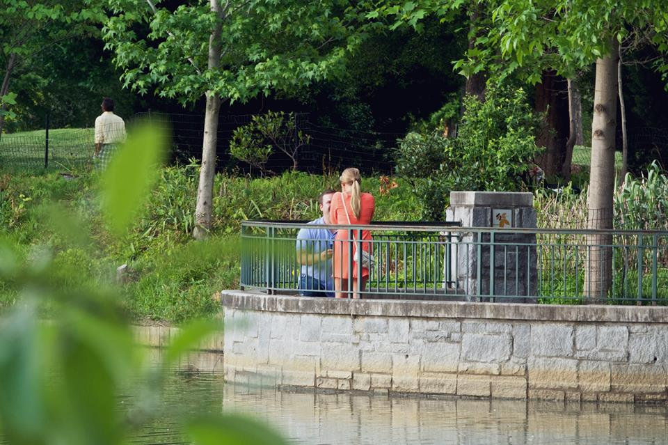 Piedmont Park Proposal in Atlanta