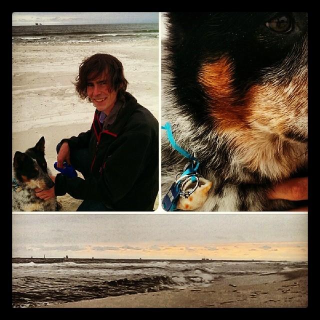 Creative Proposal Idea Beach with Dog (1)