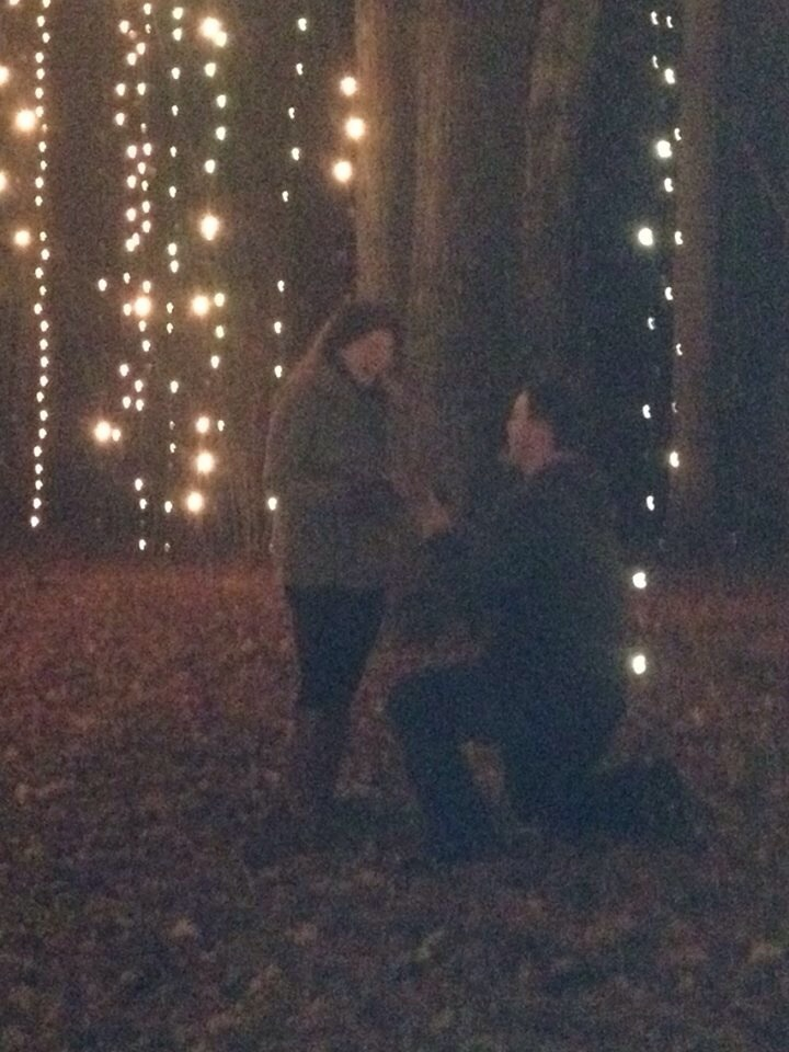 Christmas Lights Proposal