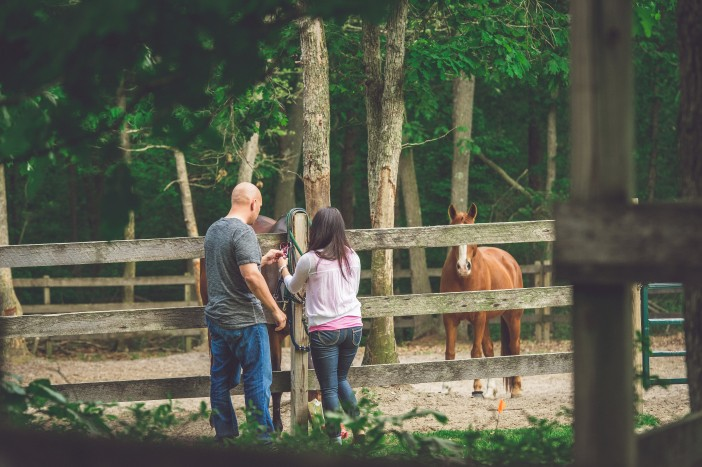 Equestrian Horse Stable Proposal (3)