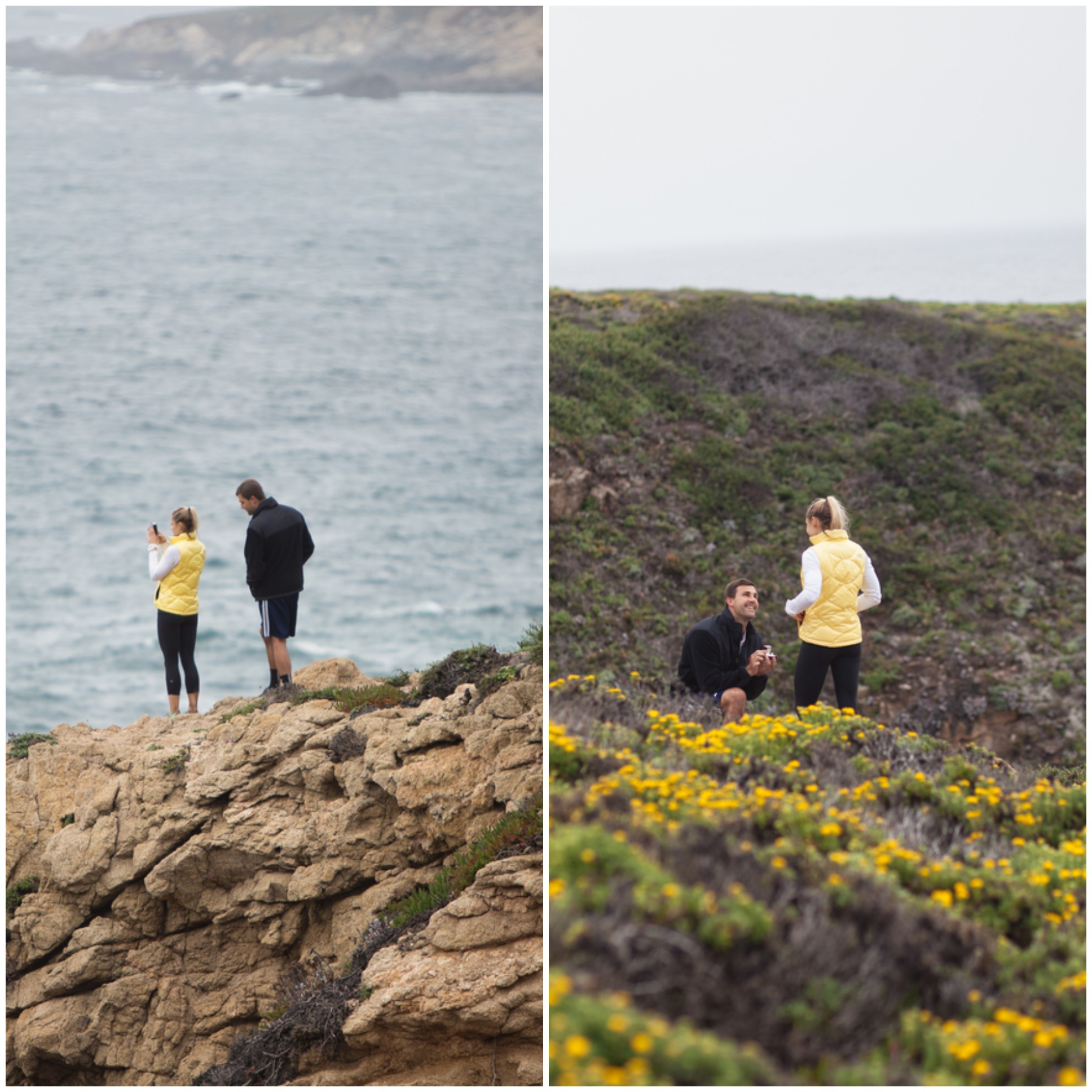 Hiking Proposal at Big Sur