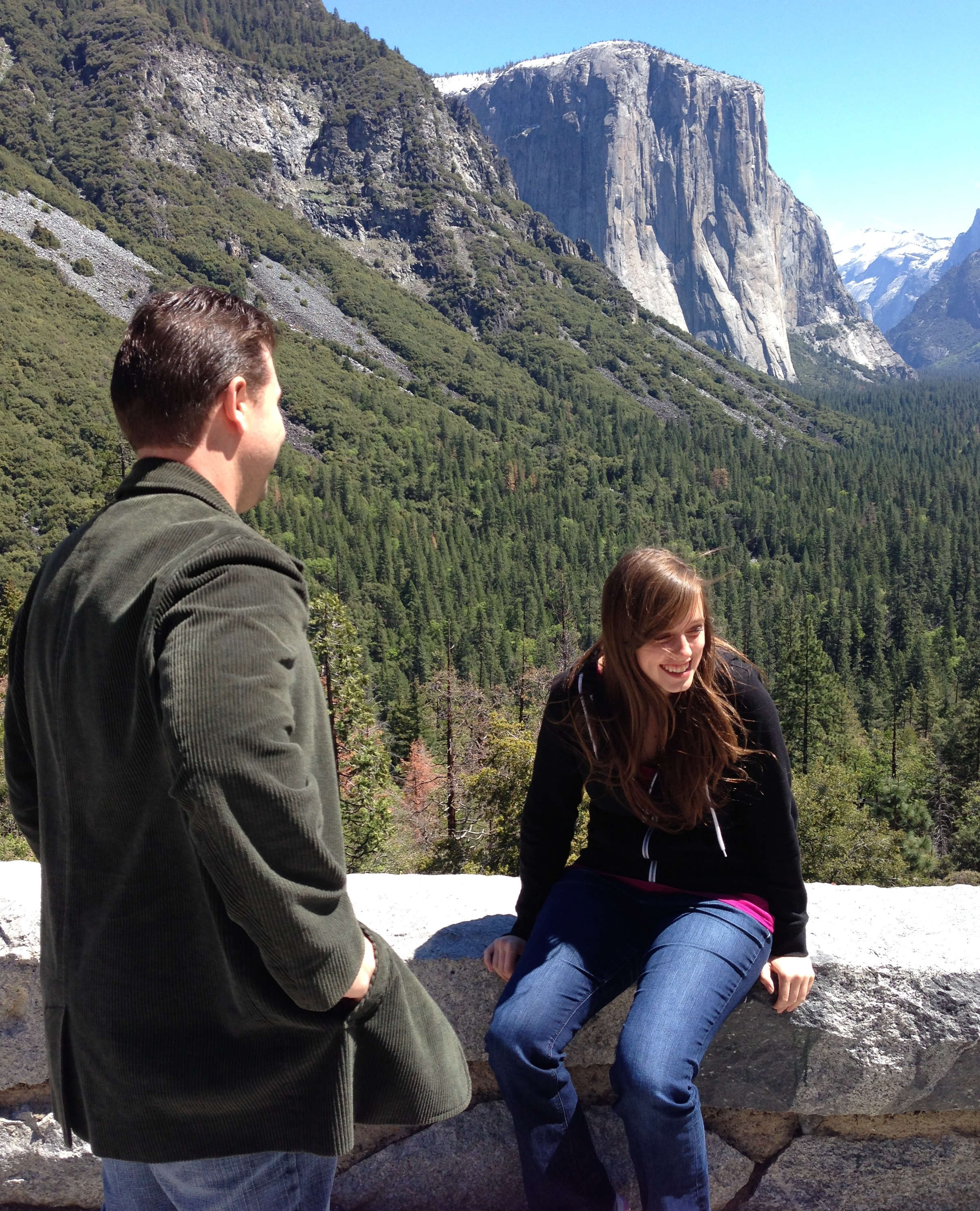 Image 2 of Danielle and Kyle | Yosemite National Park Proposal