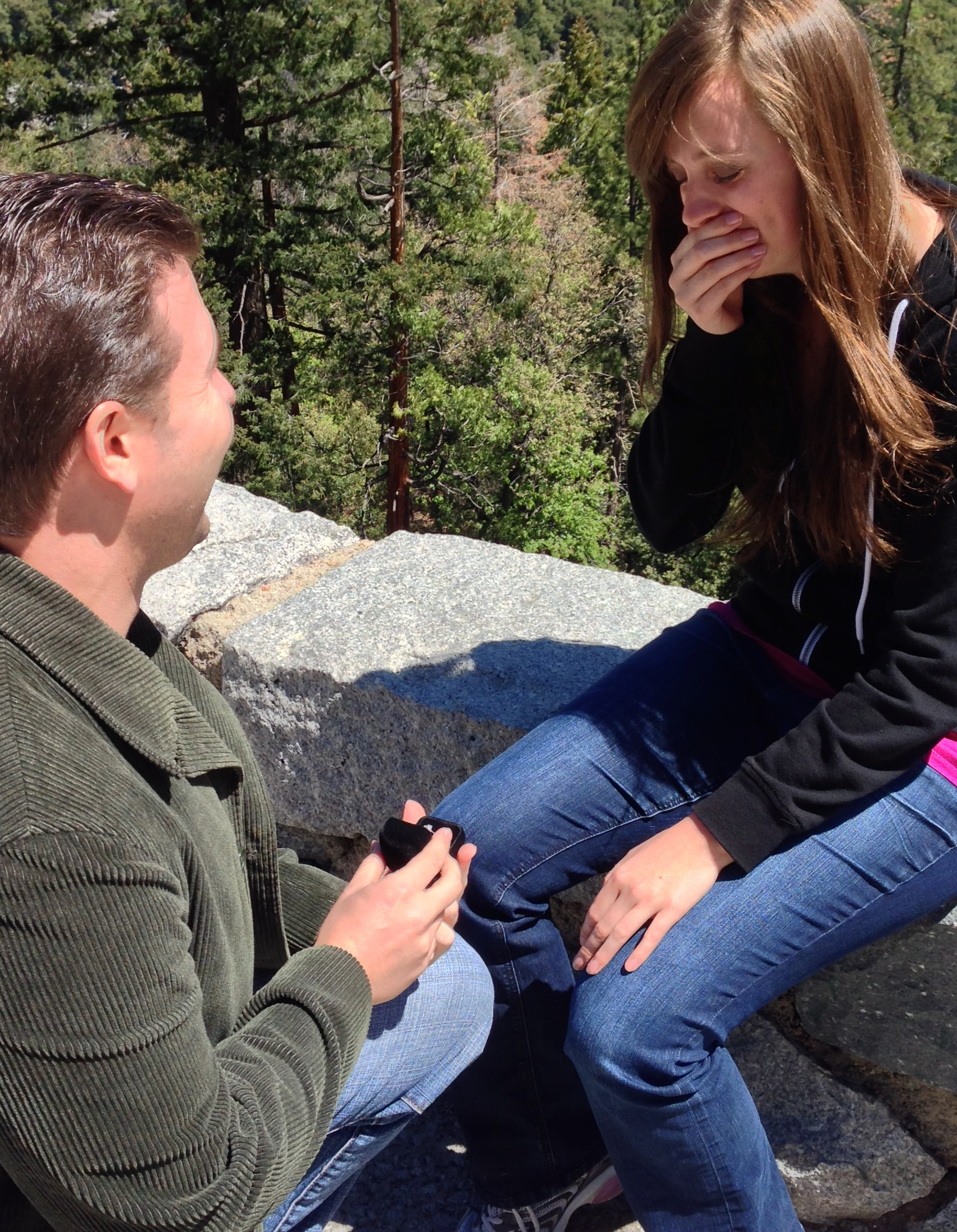 Image 3 of Danielle and Kyle | Yosemite National Park Proposal