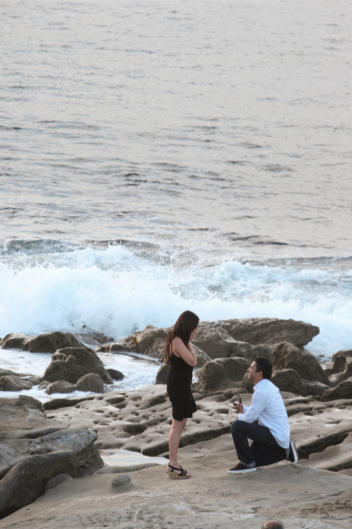 La_Jolla_Proposal