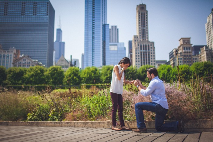 Image 2 of 10+ Awesome Chicago Marriage Proposal Ideas