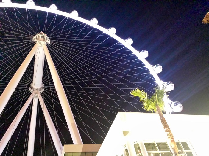 Proposal on Vegas Ferris Wheel (9)