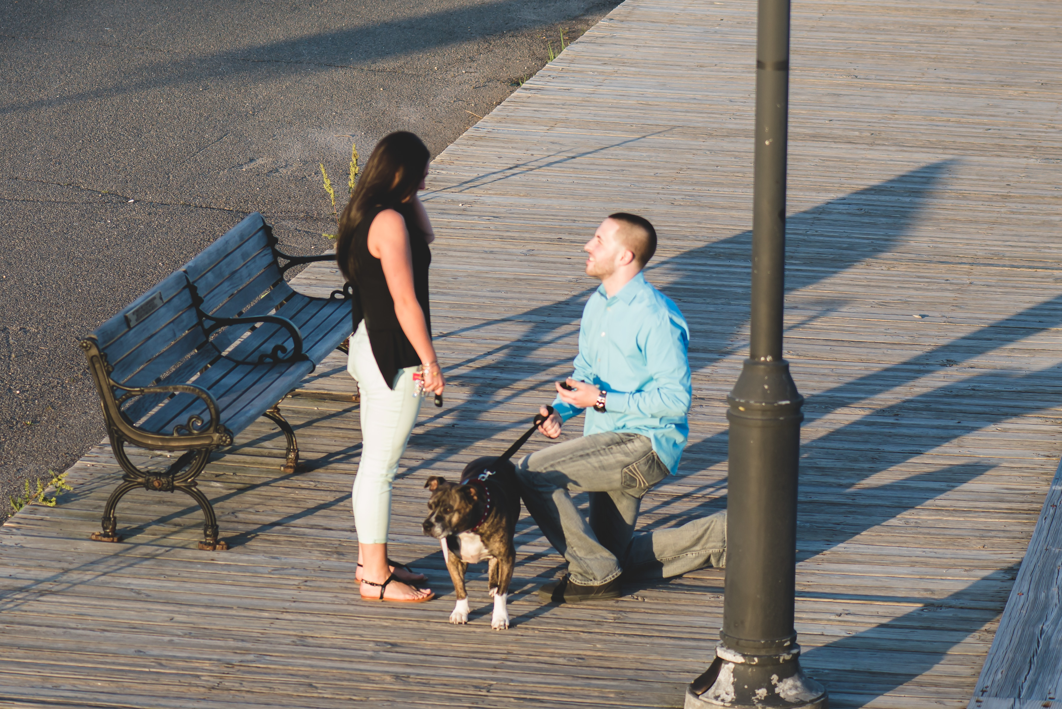 Image 5 of Dog Helps with Scavenger Hunt Proposal