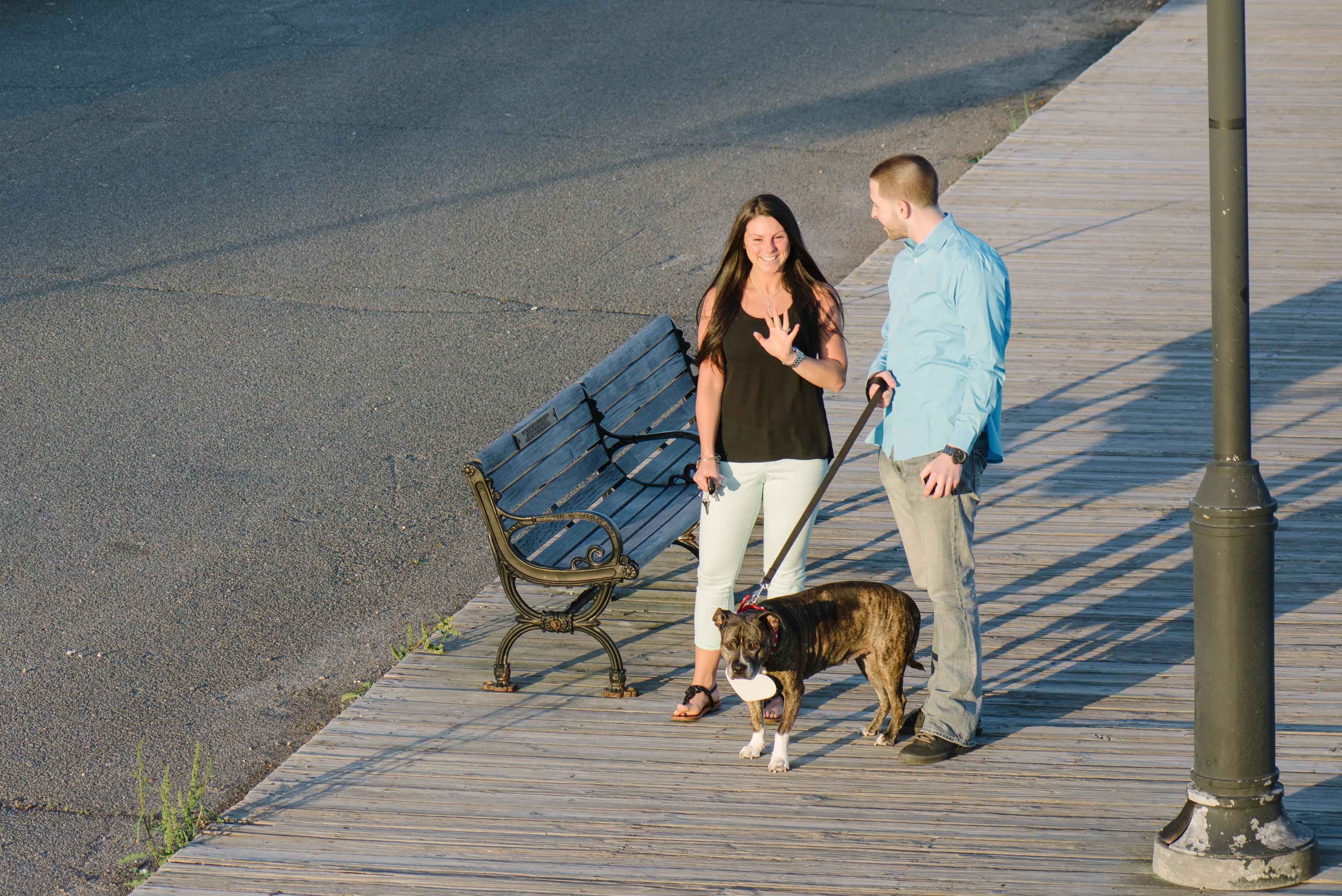 Image 7 of Dog Helps with Scavenger Hunt Proposal