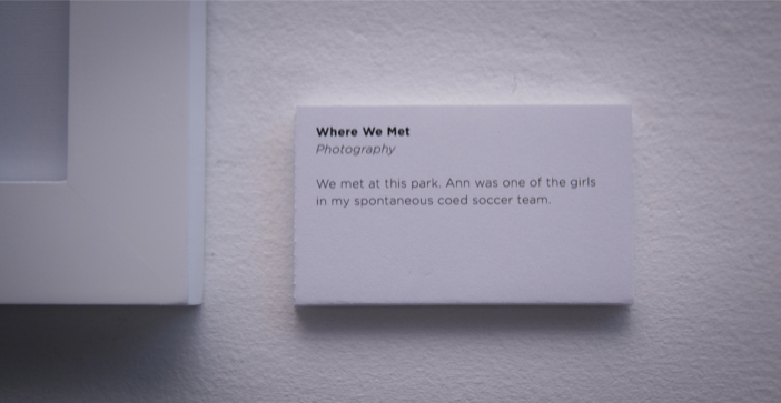 Art Gallery Marriage Proposal Idea -6927