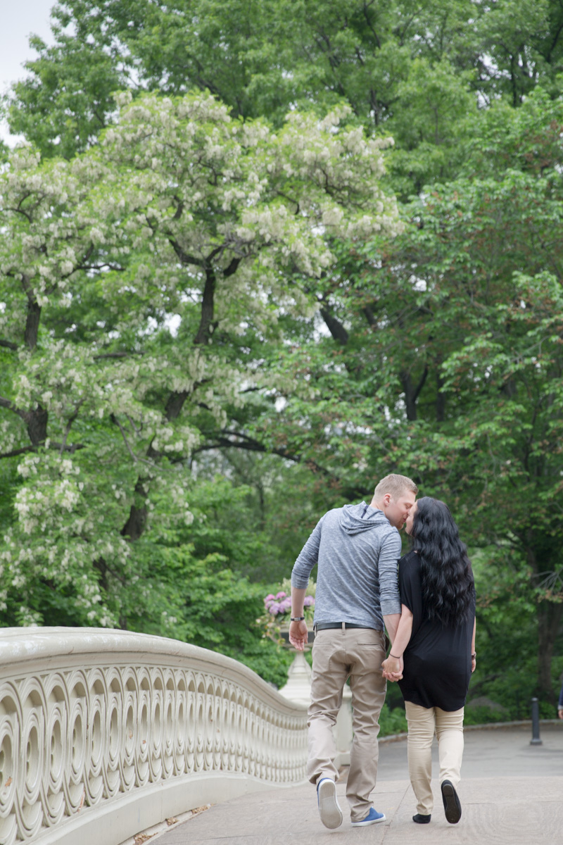 Central Park New York Proposal (15)