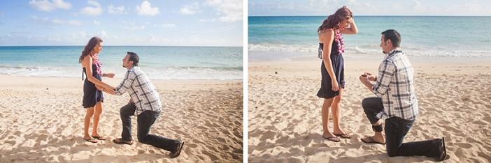 Image 2 of Michael and Kristyn's Hawaii Beach Proposal
