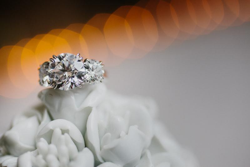 Horseshoe Marriage Proposal (19)