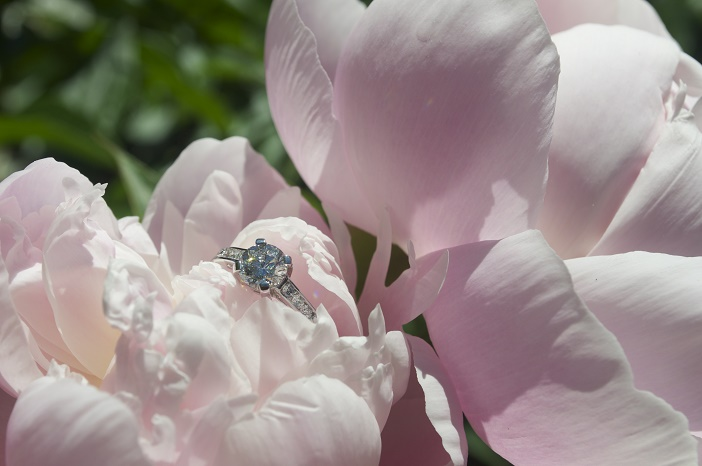 Marriage Proposal in Peony Garden (4)
