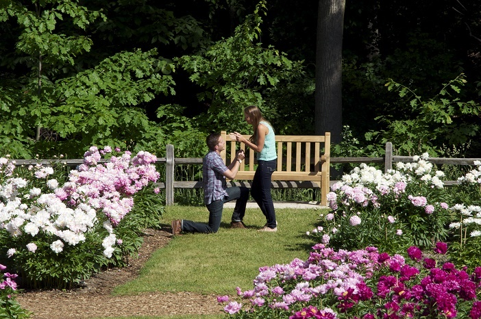 Marriage Proposal in Peony Garden (5)