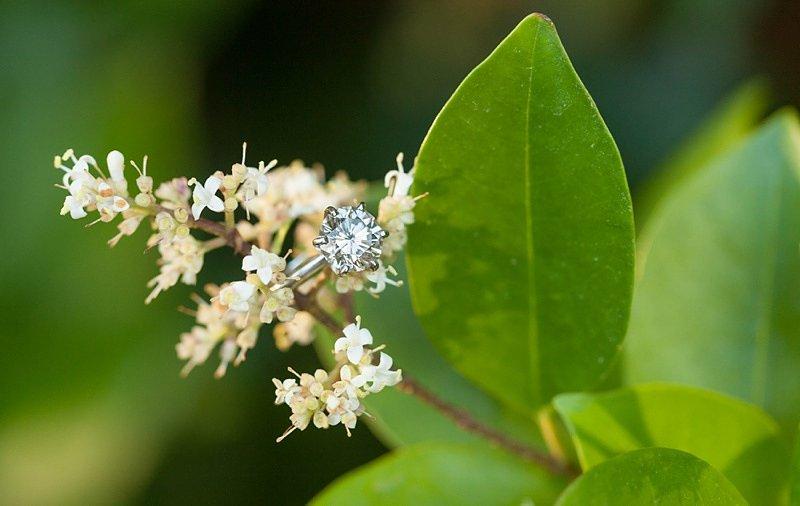 Scavenger Hunt Marriage Proposal (6)