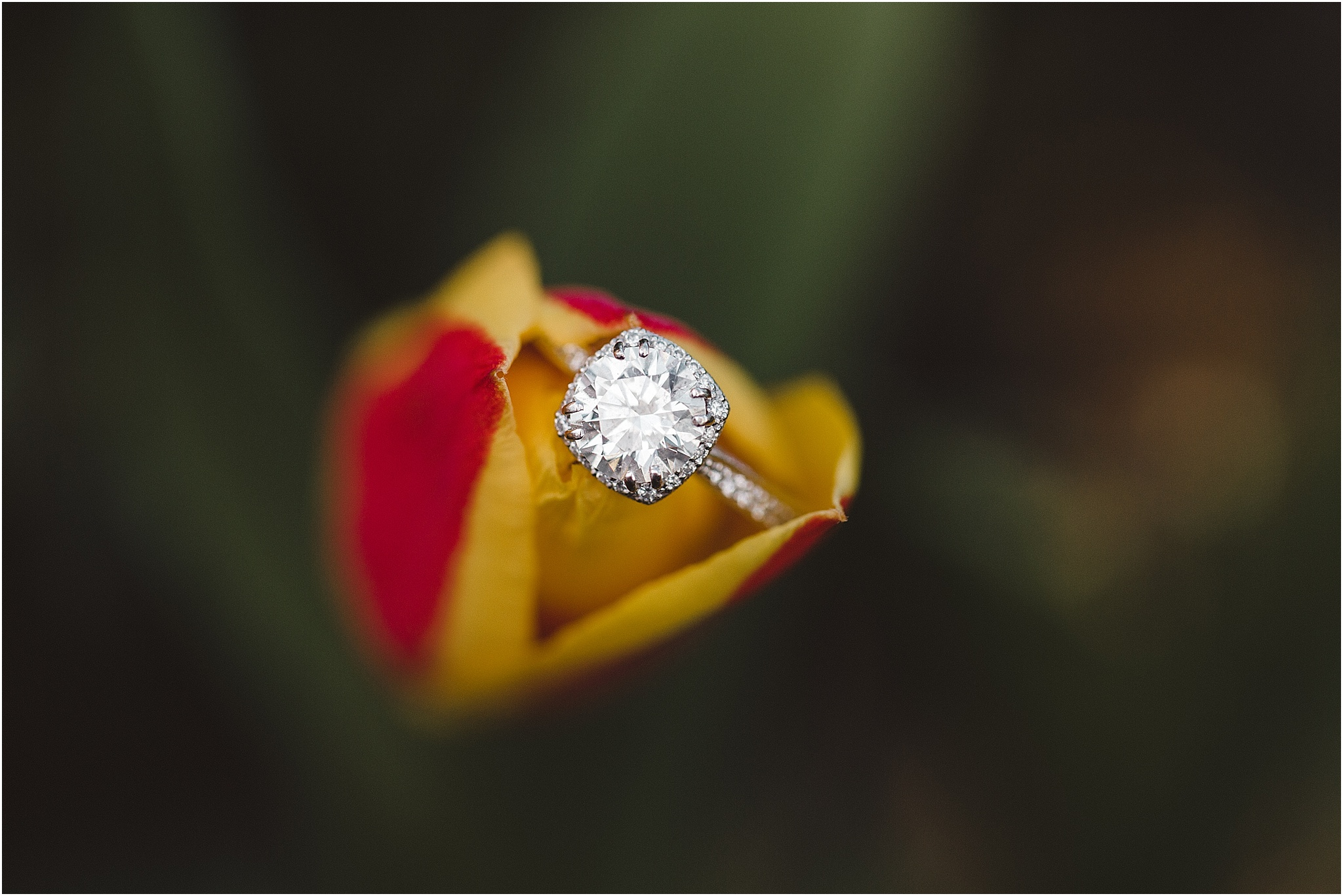 Engagement Ring Wedding Photography with Flowers