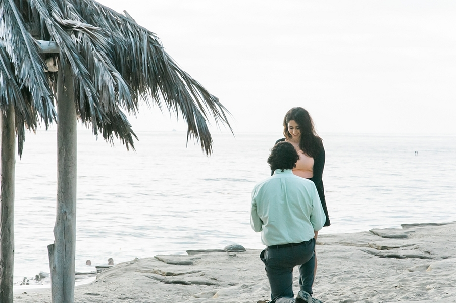 Beach Proposal (6)