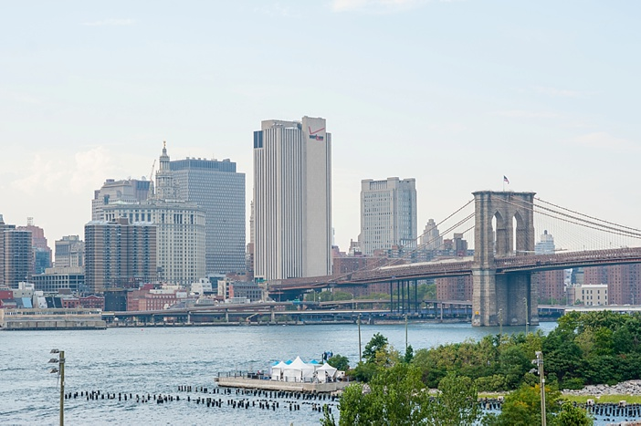 Image 3 of John and Michelle's Brooklyn Promenade Proposal