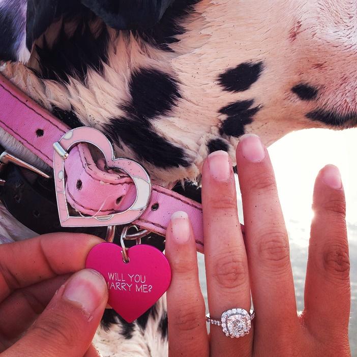 Puppy Dog Proposal (4)