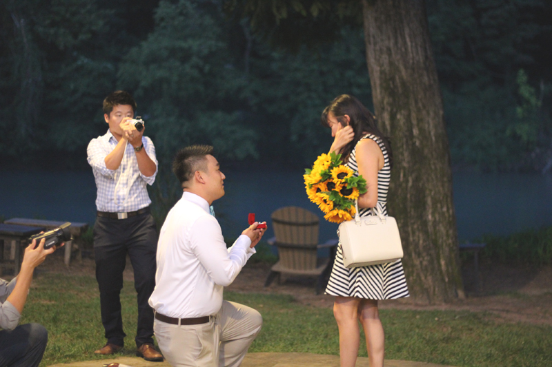 Sunflower Marriage Proposal (25)