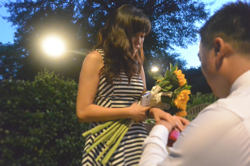 Sunflower Marriage Proposal (6)