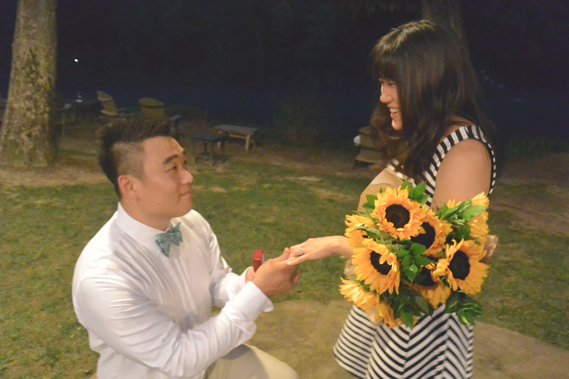 Sunflower Marriage Proposal (8)