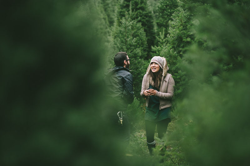 Image 5 of Adorable Marriage Proposal at a Christmas Tree Farm