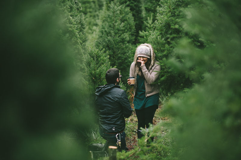 Image 6 of Adorable Marriage Proposal at a Christmas Tree Farm