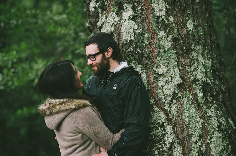 Image 1 of Adorable Marriage Proposal at a Christmas Tree Farm
