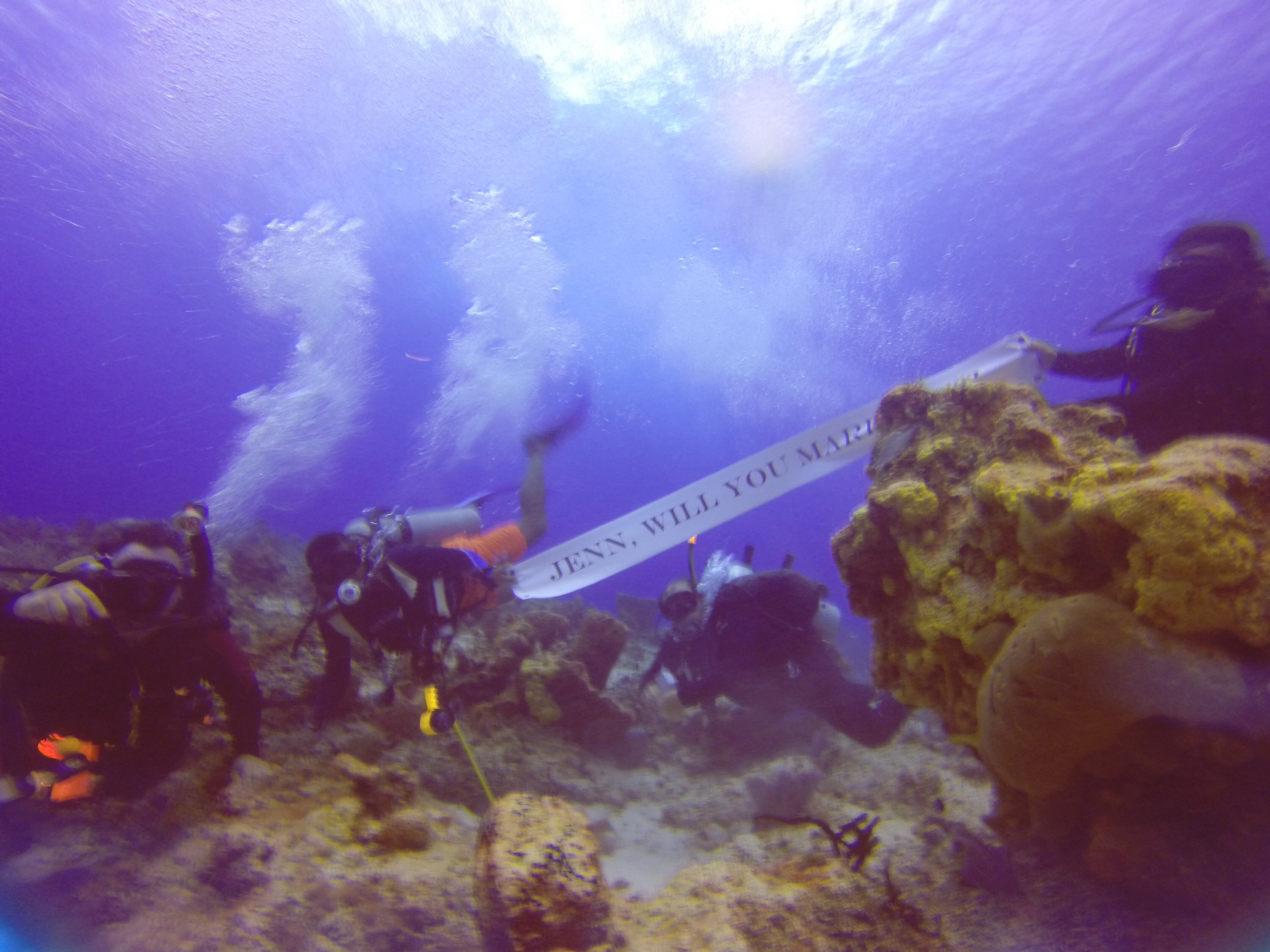 Scuba Diving Marriage Proposal