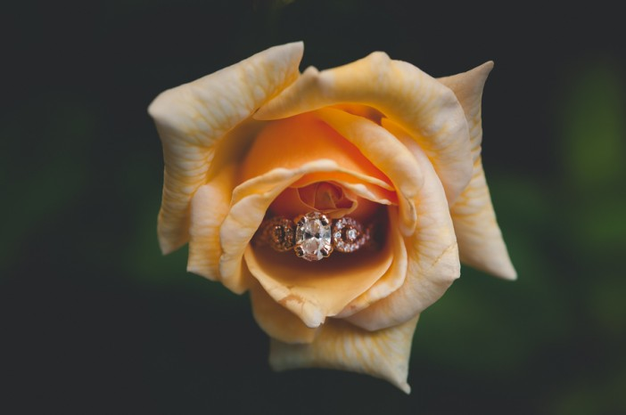 engagement ring photo examples