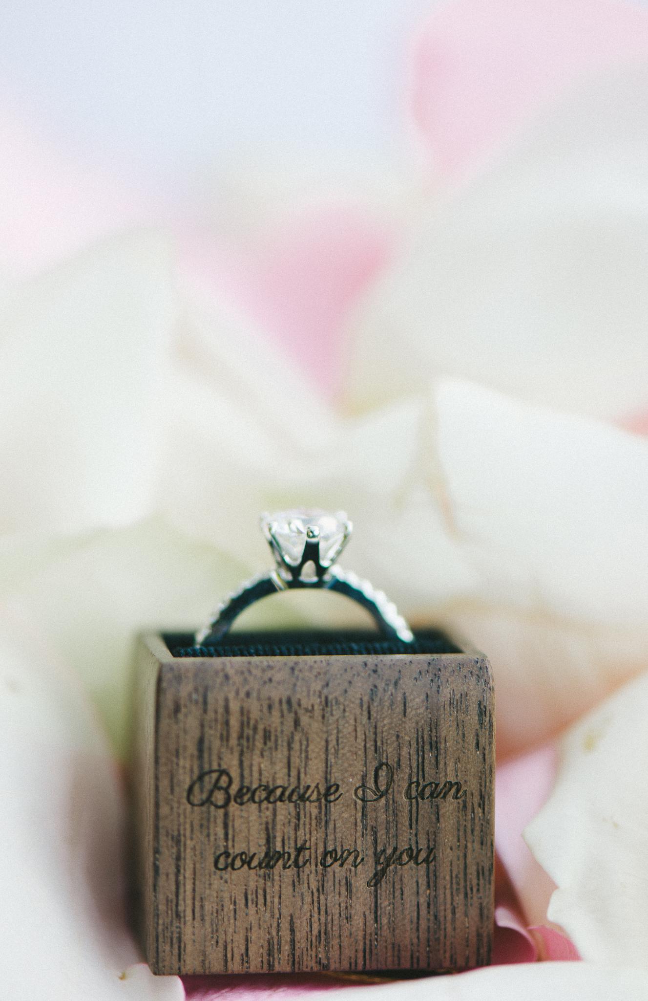 old-stone-house-garden-georgetown-proposal-dc-wedding-photographer-2
