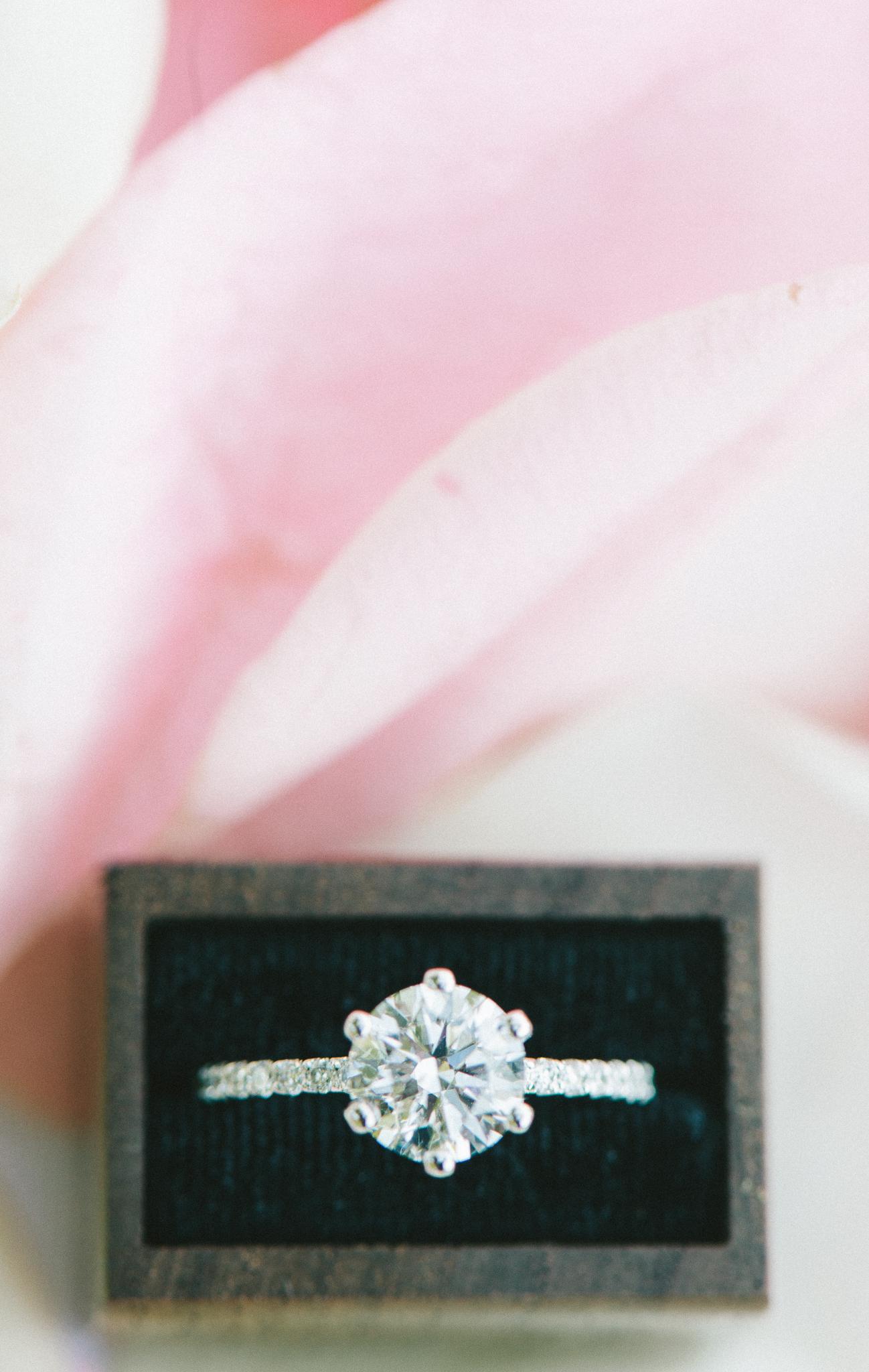 old-stone-house-garden-georgetown-proposal-dc-wedding-photographer-50