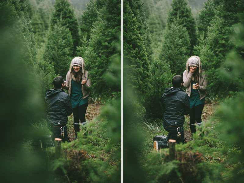Image 7 of Adorable Marriage Proposal at a Christmas Tree Farm